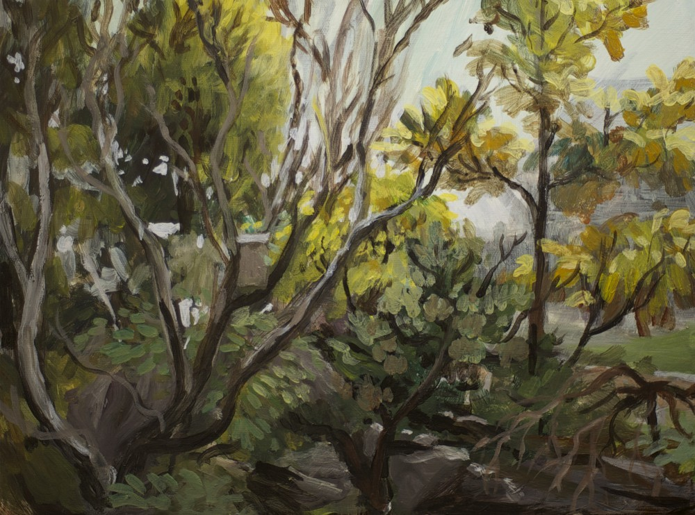 acrylic on canvas bush painting