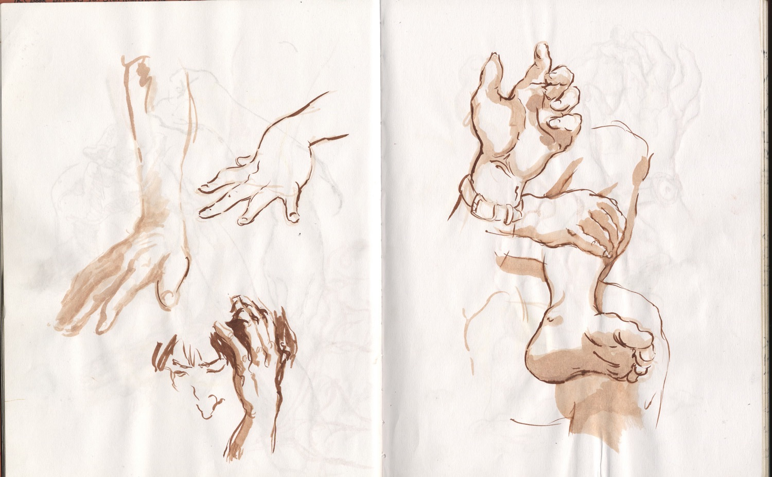 hand and feet studies