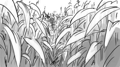 cornfield  nlqttg