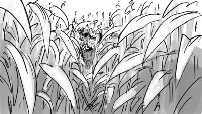 cornfield  flmzlo