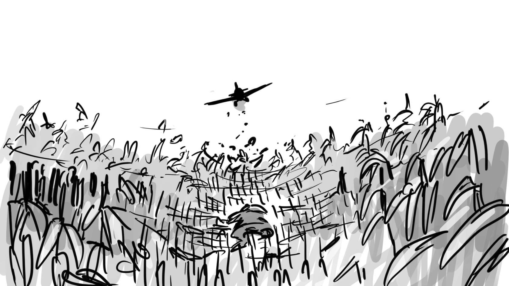 cornfield  azjsdm