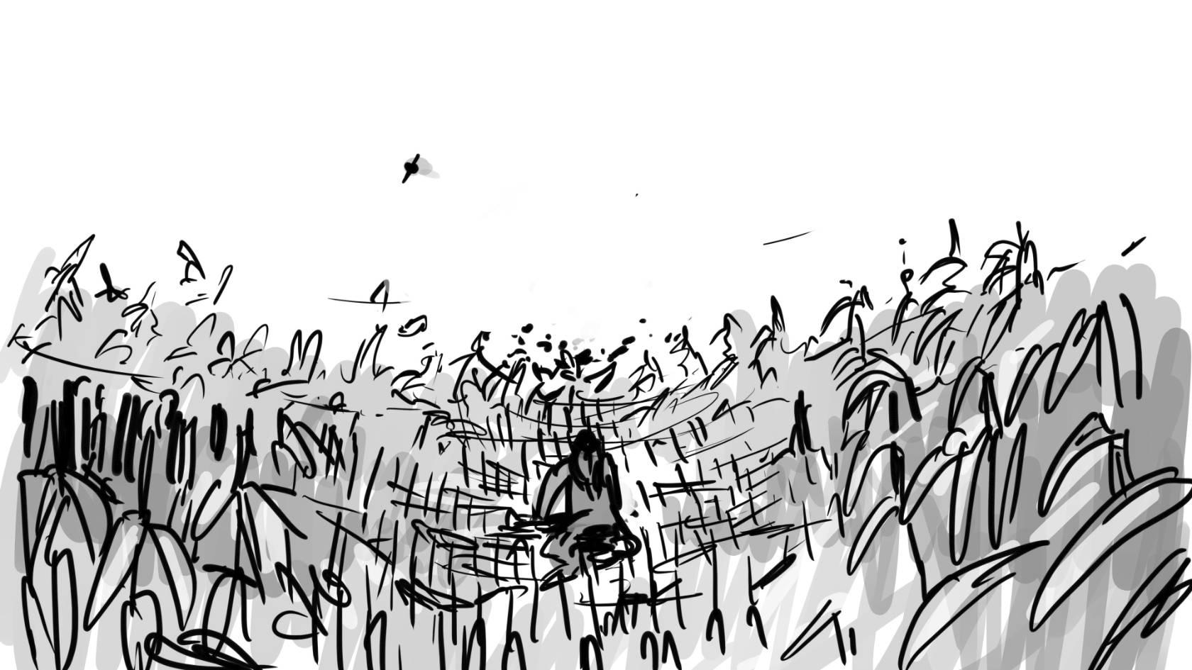 cornfield  qcucjp