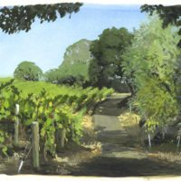 vineyard gouache