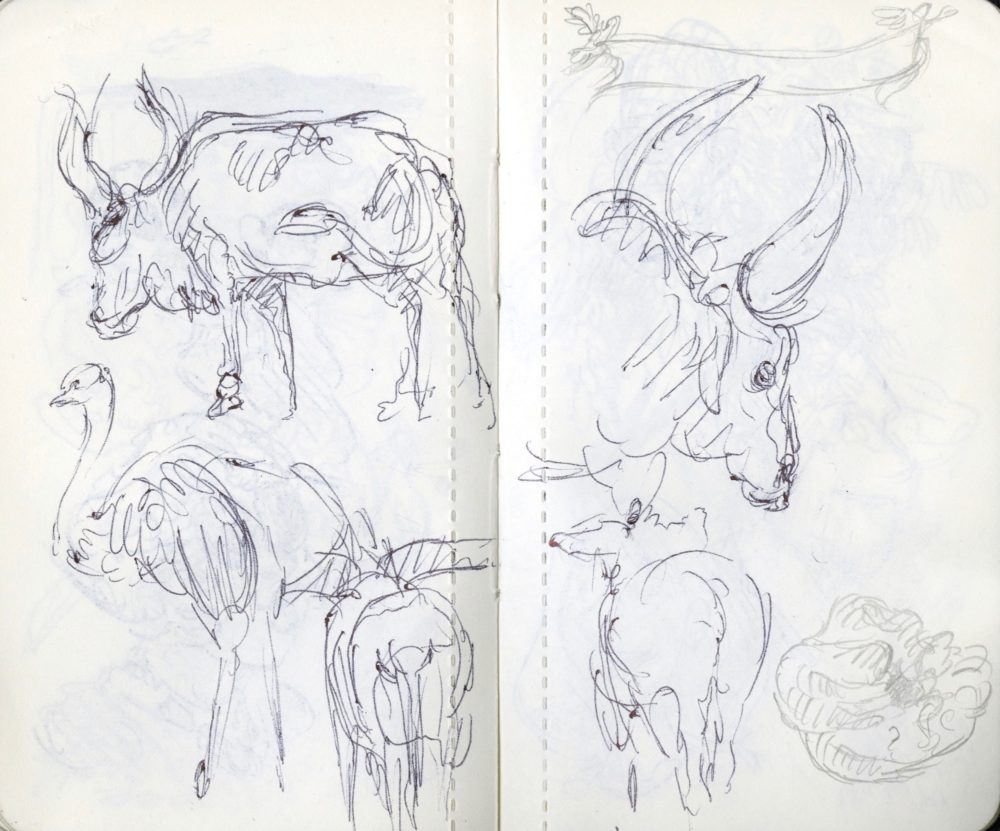 animal drawings at the zoo